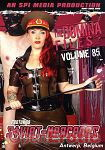 The Domina Files Vol. 85 (SPI Media)